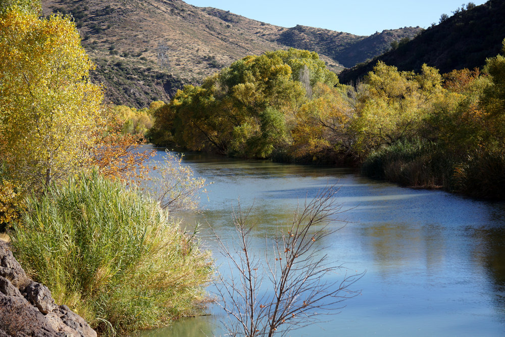 Camp Verde - river.jpg