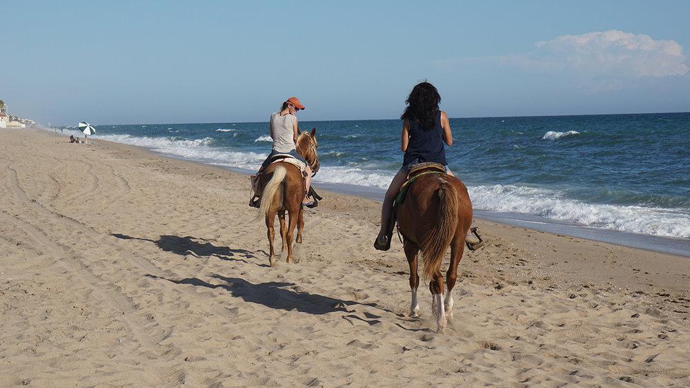 Horseback_sm.jpg