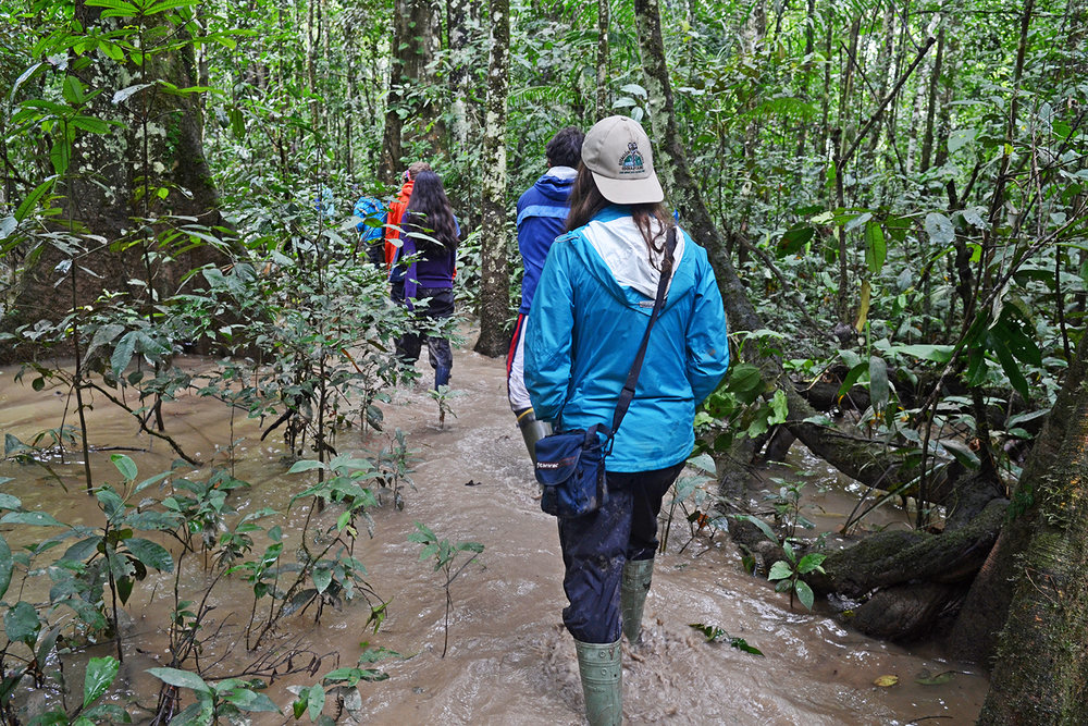WS Peru Amazon basin hike.jpg