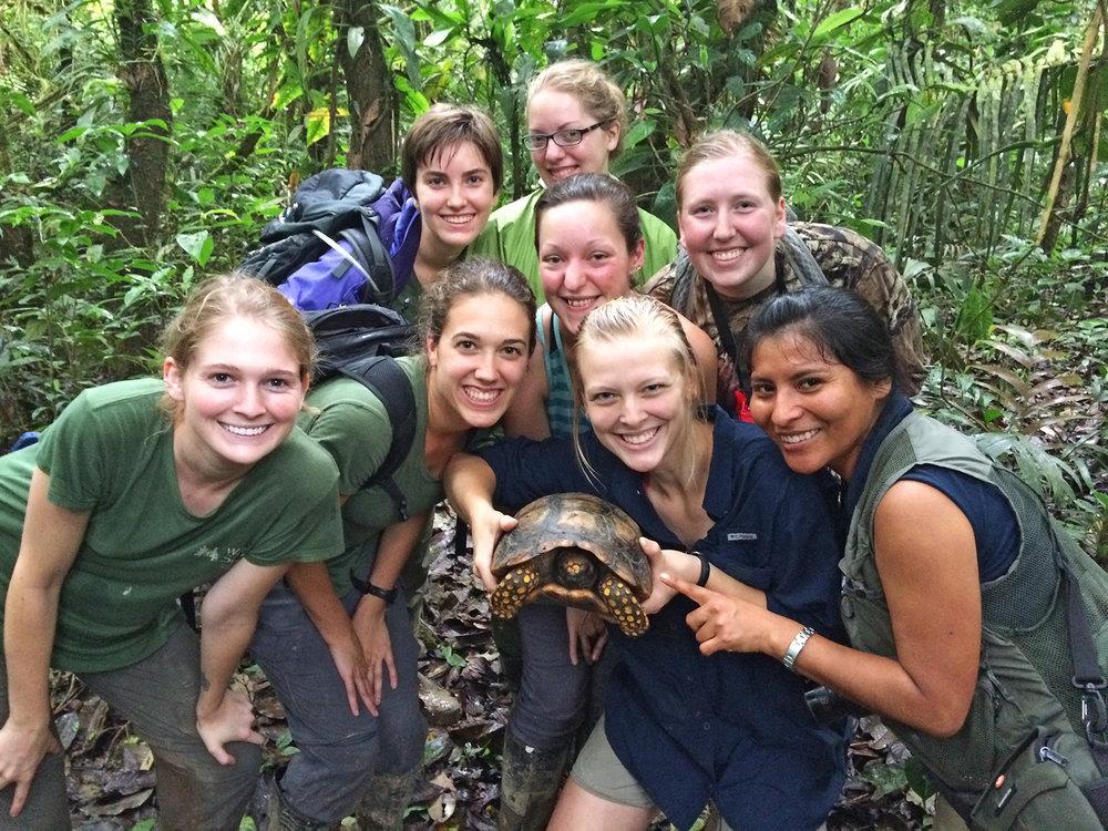 Ecuador Tortoise IMG_0267.jpg