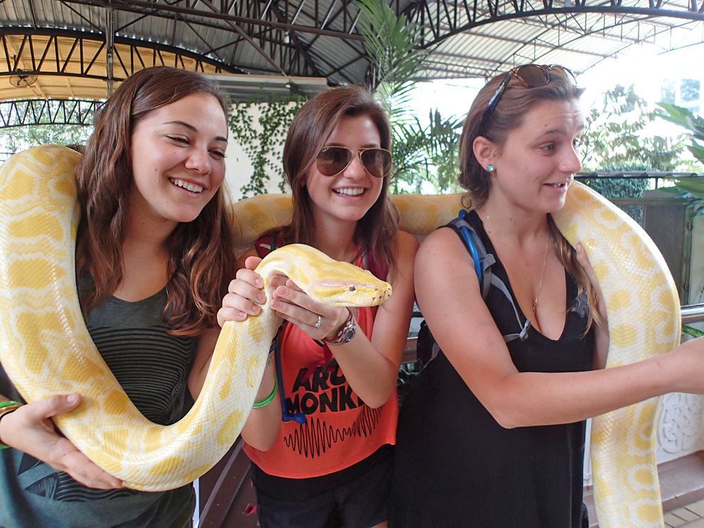 WS Thailand girls with snake 2015.jpg