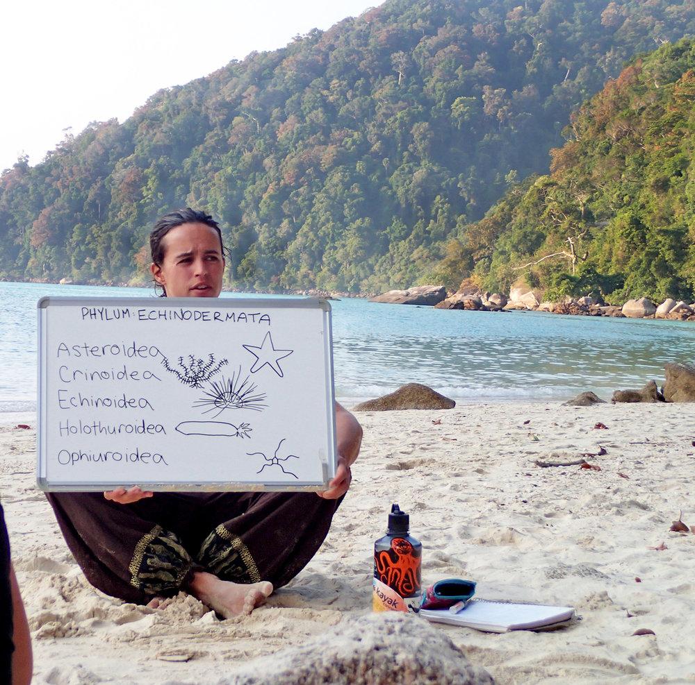 WS Thailand student presentation.jpg