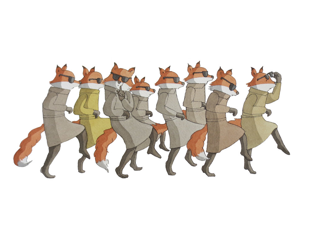 A skulk of foxes - and other curious collective nouns…