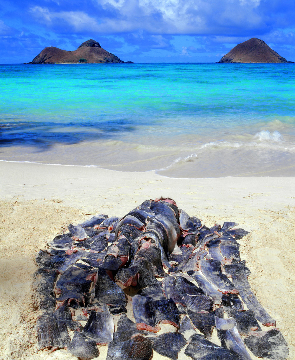 Fishskin Blanket Amidst the Mokulua's / I'a Kapa (Fish Covering)