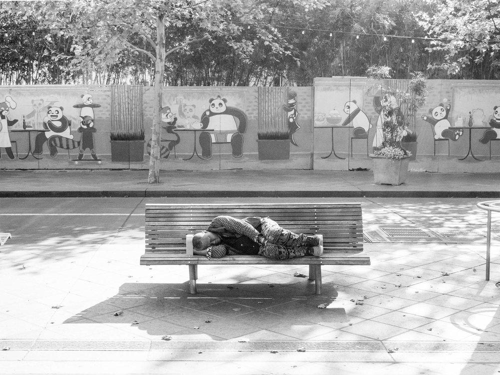 Unconcerned Pandas. First Street, San Jose, California.