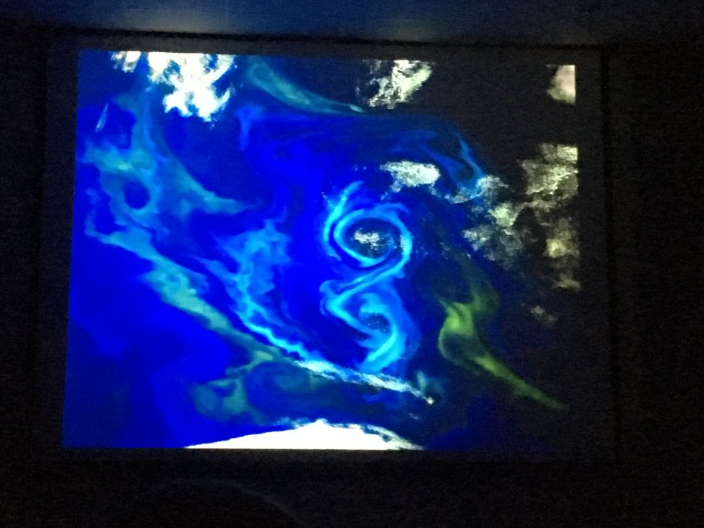 Phytoplankton seen from space. (Slide image: Story Musgrave/NASA)