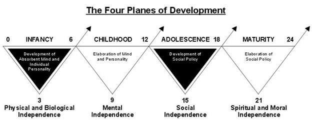 four planes of development.png