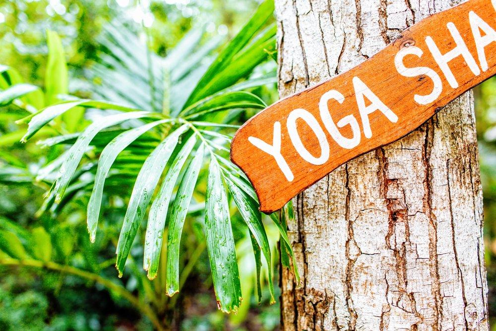 Lokah samastah sukhino bhavantu - May all beings everywhere be happy and free (of suffering).