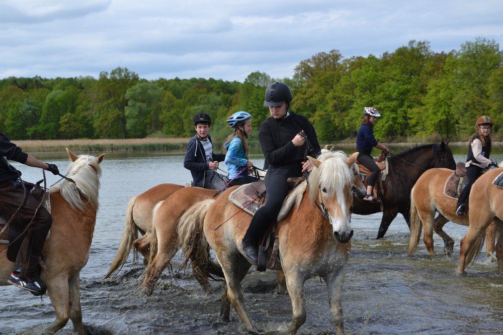 Tradiční májové koně ve Štěticích u Písku