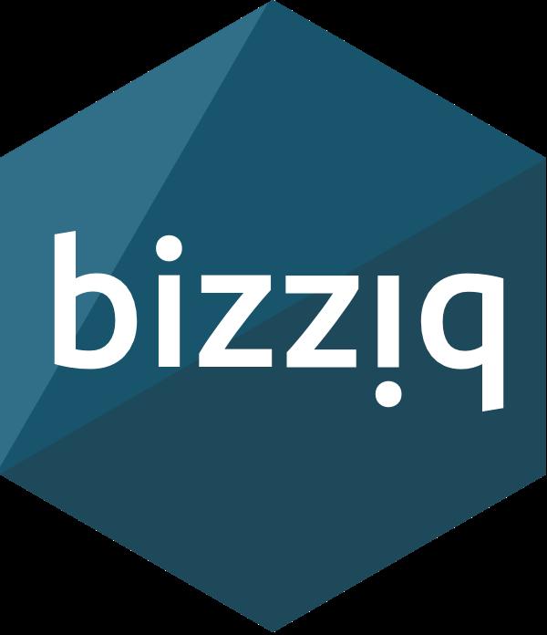 Resultado de imagen de bizz-iq logo