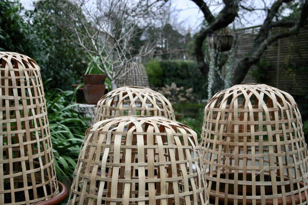 Bamboo cloches