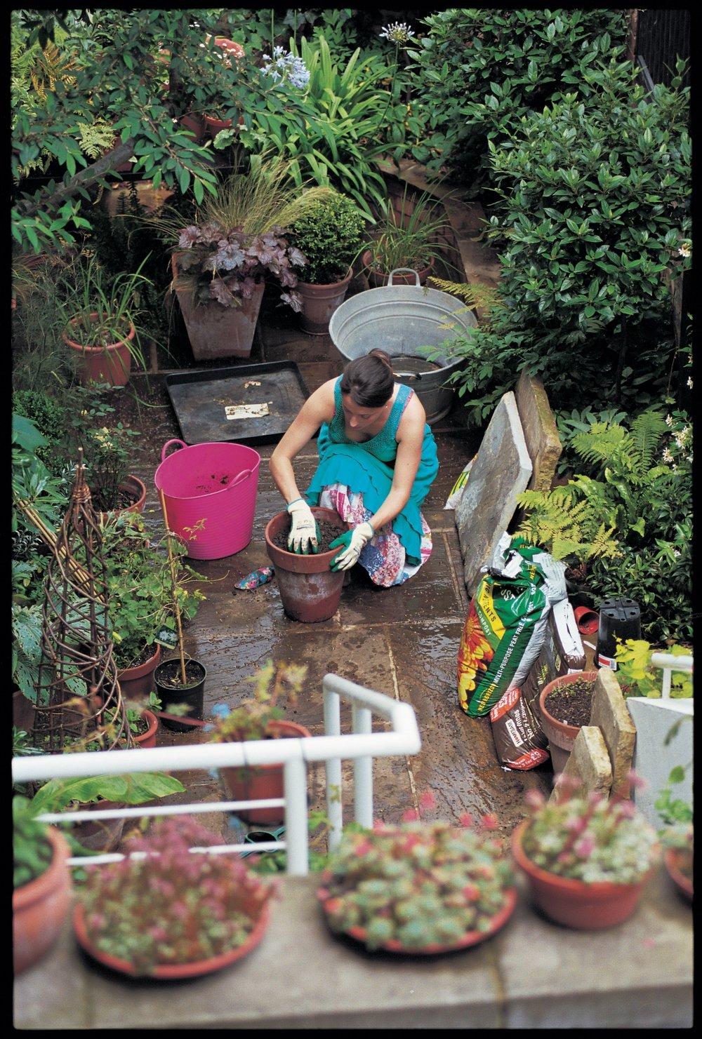gardening in courtyard.jpg