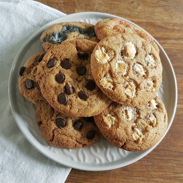 Who wants a fresh baked cookie? We have chocolate chip, marshmallow and jelly baby options!  #freshcookies #cookies #cookie #cookierecipe #chocchipcookies #chocchipcookie #chocolatechipcoockies #chocolatechipcookies #chocochip #chocchip #marshmallowcookies #baking #menwhobake