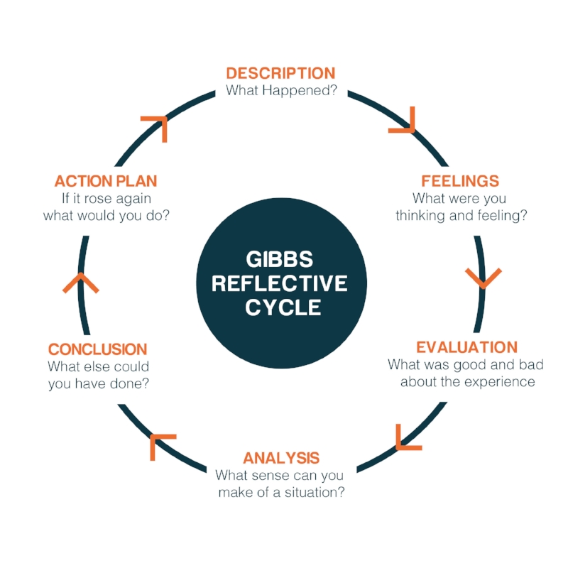 TDE_008_Gibbs Reflective Cycle-01.jpg