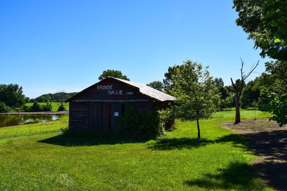Brookdale Park-3.jpg