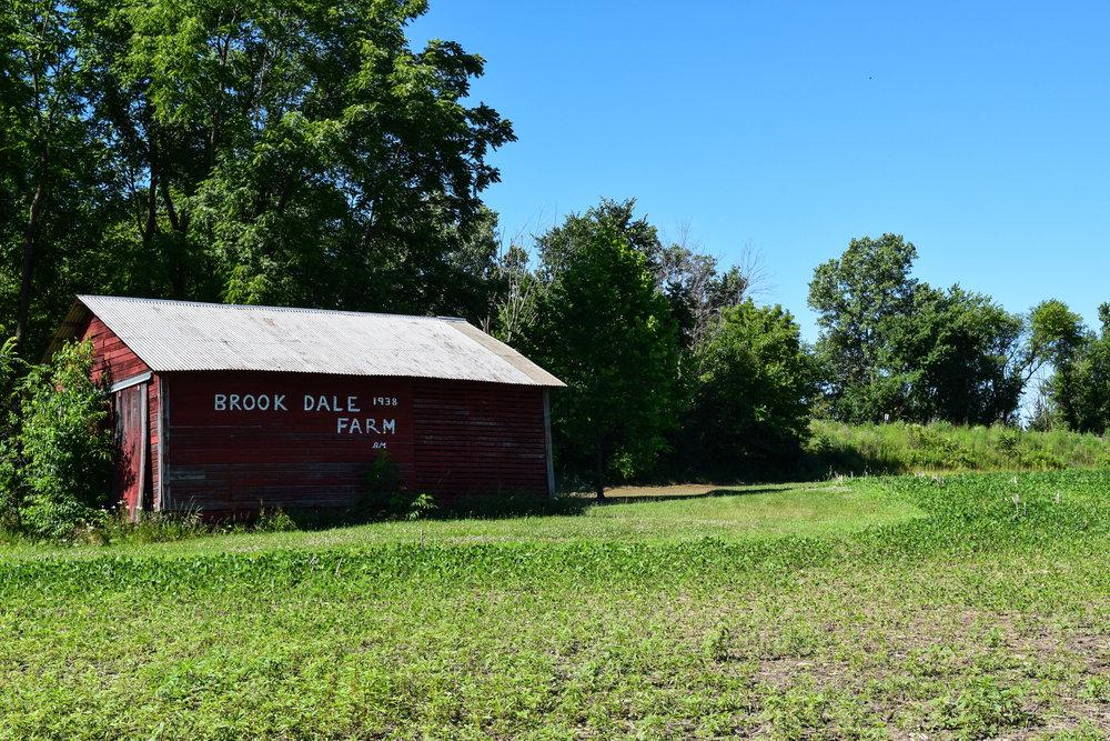 Brookdale Park-13.jpg