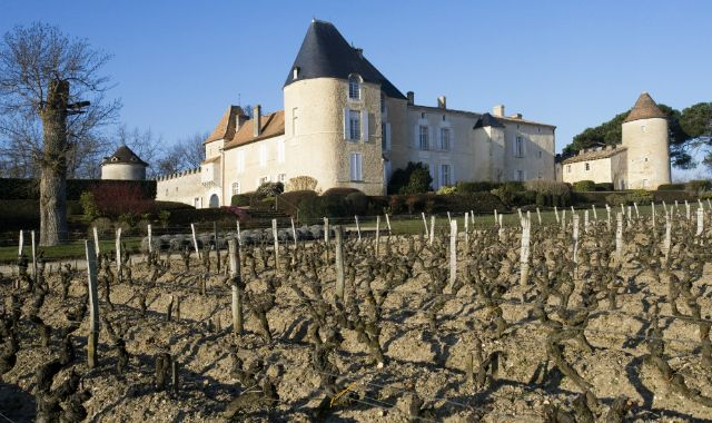 Chateau d'Yquem in winter | Sauternes, Grionde Region of Bordeaux, France