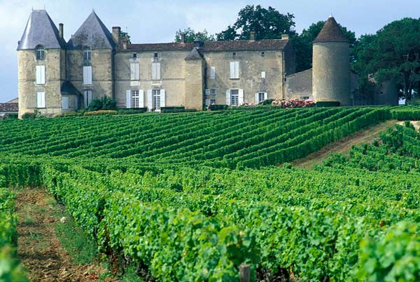 Chateau d'Yquem in summer | Sauternes, Grionde Region of Bordeaux, France