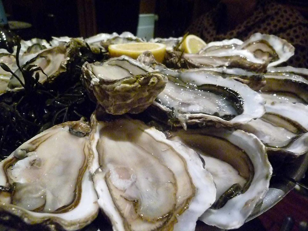 Copy of Oysters