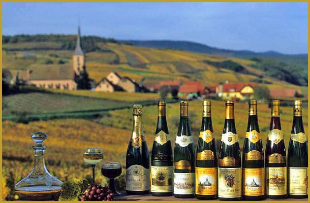 Alsace bottles.jpg