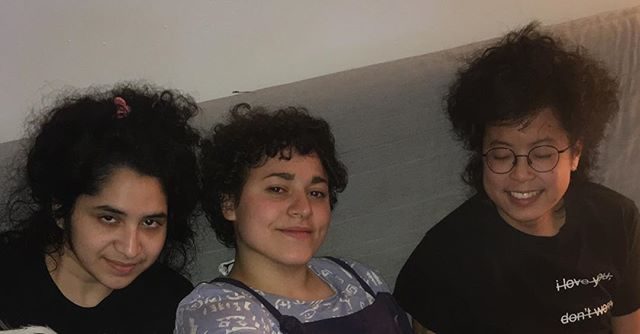 Curly hair household only