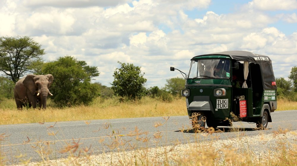 botswana elephant.jpg