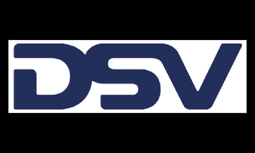 dsv-01.png
