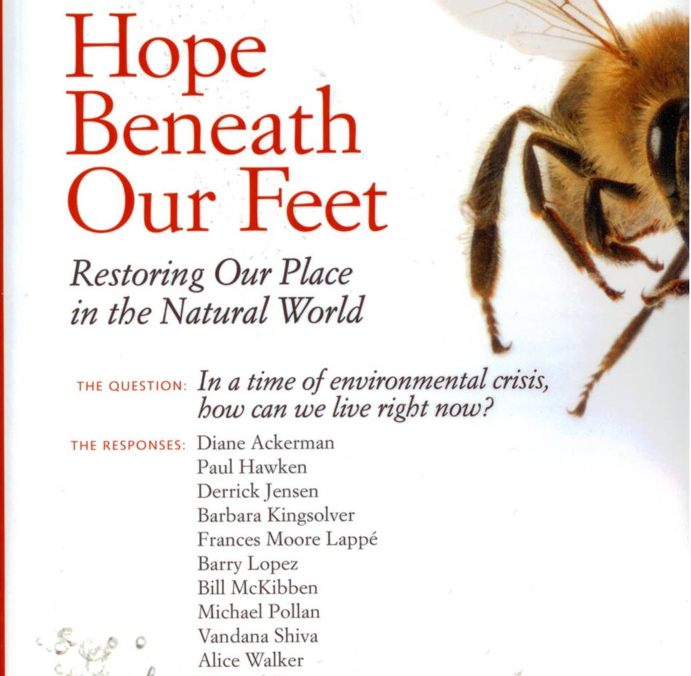 Hope-Beneath-Our-Feet-1-e1508356353406.jpg
