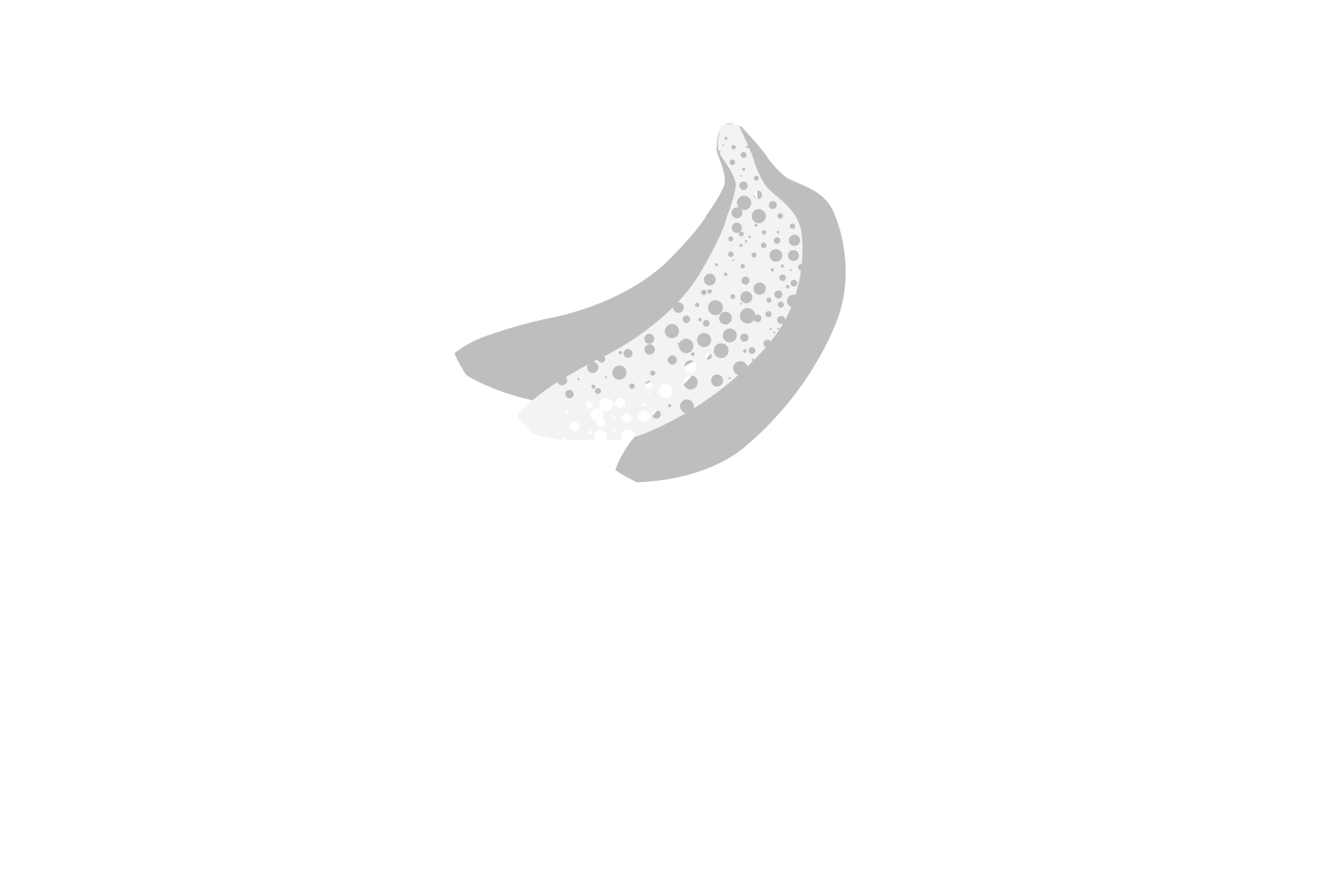 Spotted Banana  |  Wedding, Boudoir, Family Photographer