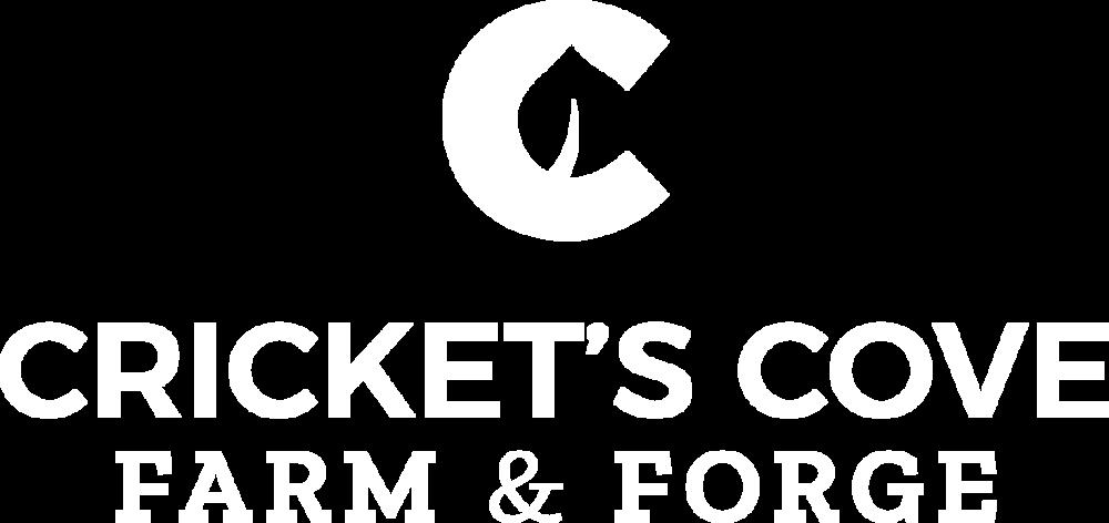 CC-Logo-V-1-White-full.png