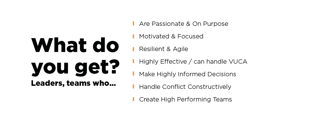 What-Do-You-Get-Higher-Purpose-Based-Leadership.png