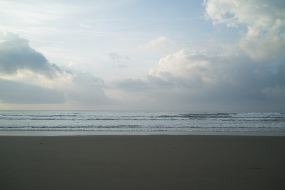 KochiGoodFoods_surf-09390.jpeg