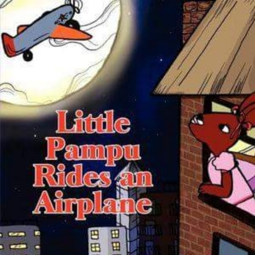 LP Rides an Airplane - Buy Now