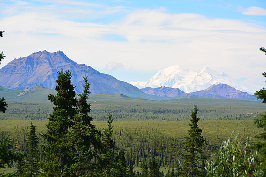 Snow-capped Denali, in all its glory