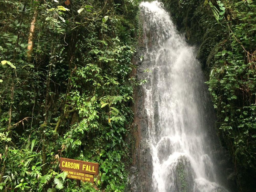 Waterfalls along the trail!