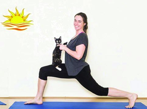 yoga_cats pic_only.jpg