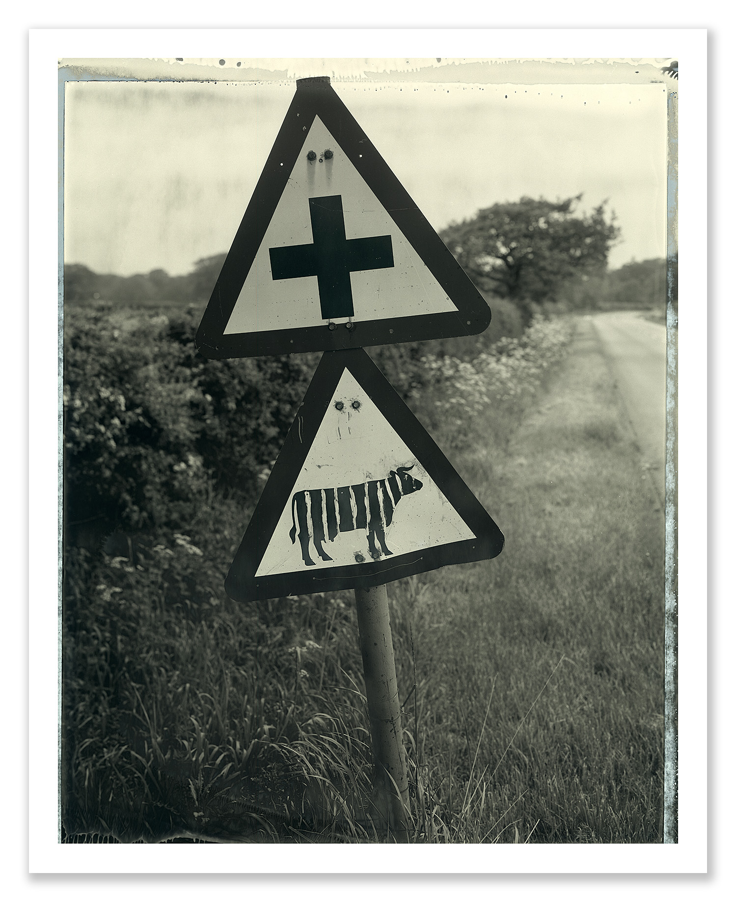 easton_zebra_roadsign