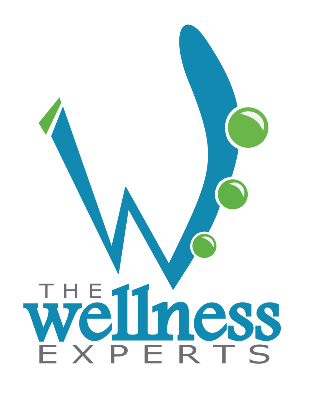 The Wellness Experts Logo