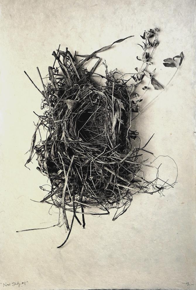 Nest Study #1