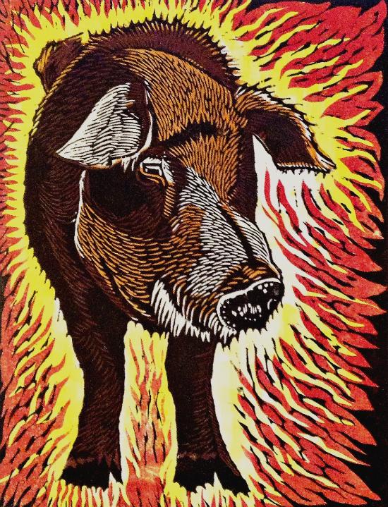 A Big Boar