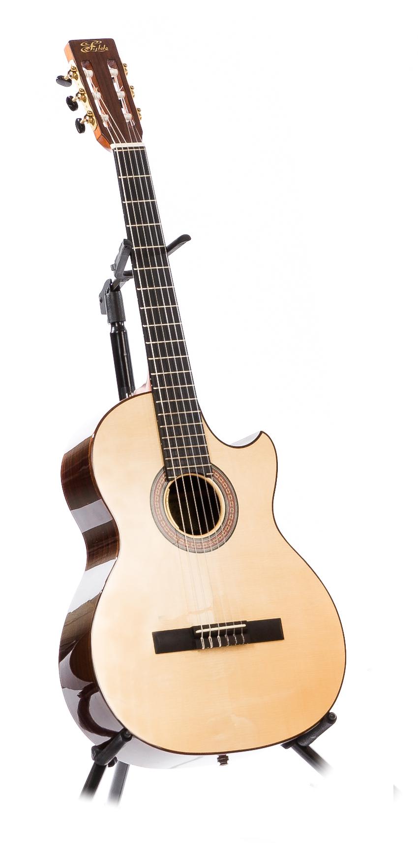 Fylde Custom Classic - Top: Englemann SpruceBack & Sides: Indian RosewoodPickup: LR Baggs Anthem