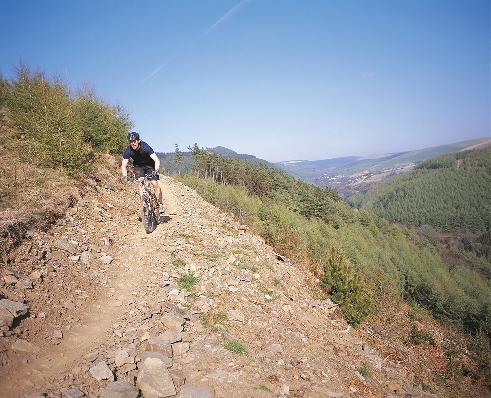 mountainbike1.JPG