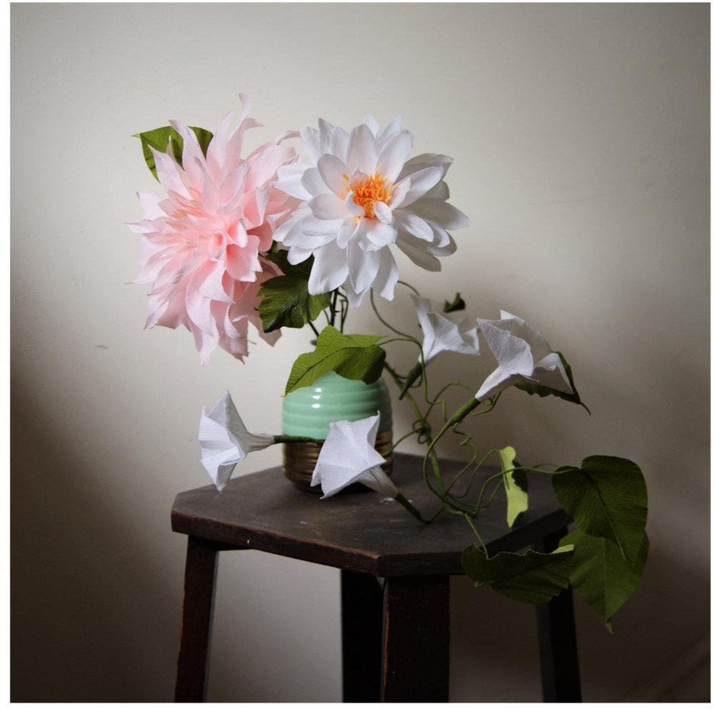 Dahlias_moonflower_1.jpg