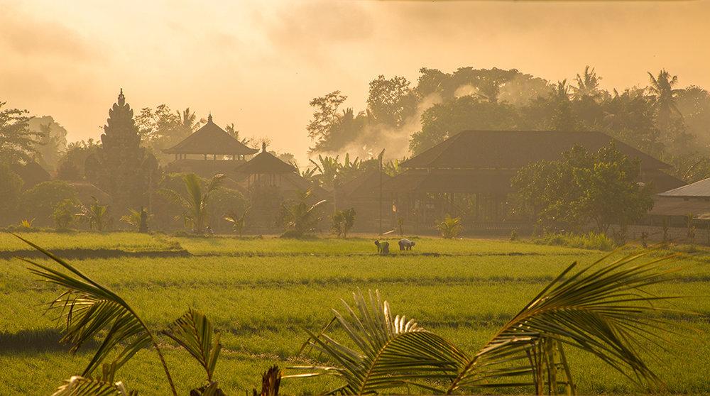 yogashala_sunrise.jpg