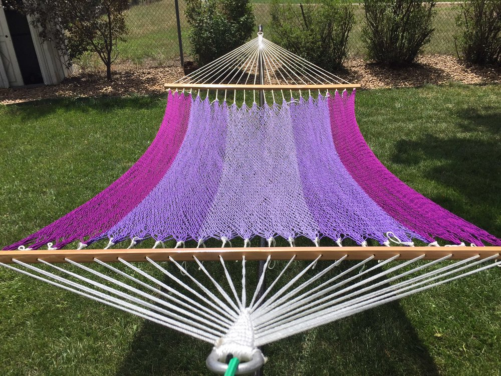 Purple Giant Hammock.JPG