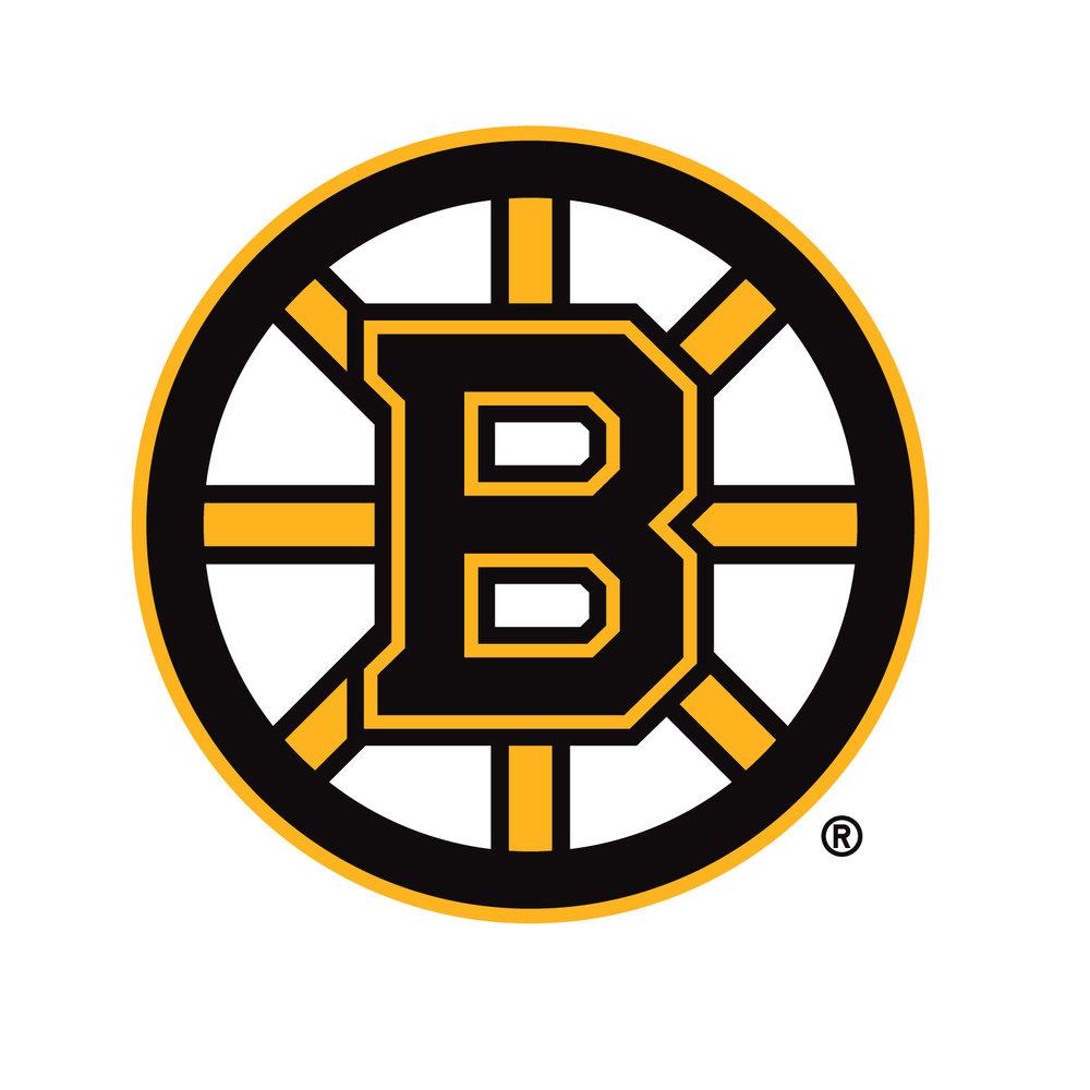 NHL_Bruins_Primary.jpg