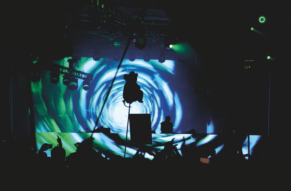 Zedd2.jpg