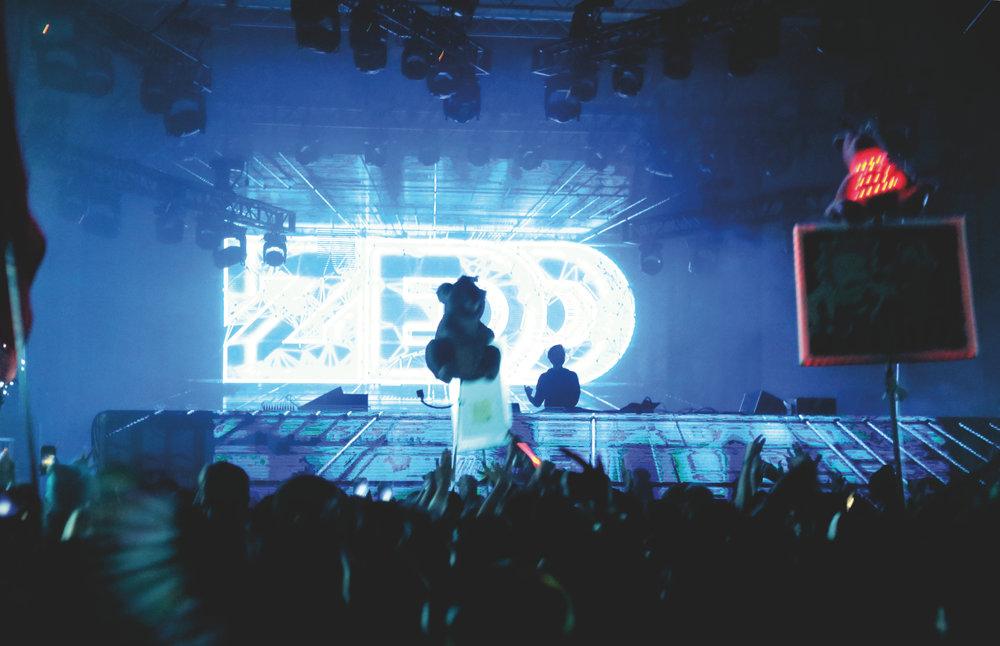 Zedd4.jpg