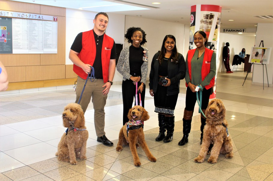 Temple-Therapy-Dogs-and-Patient-Enrichment-Team.jpg