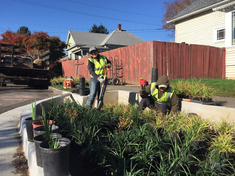 Past Verde Landscape crew members Manuela and Federico install a bioswale as part of the 72nd Ave. Green Street.